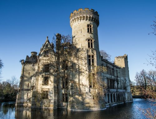 We are now the Proud Co-Owners of a Magnificent Chateau